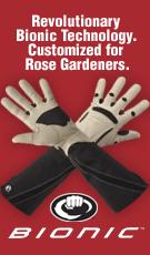 the rose gardener